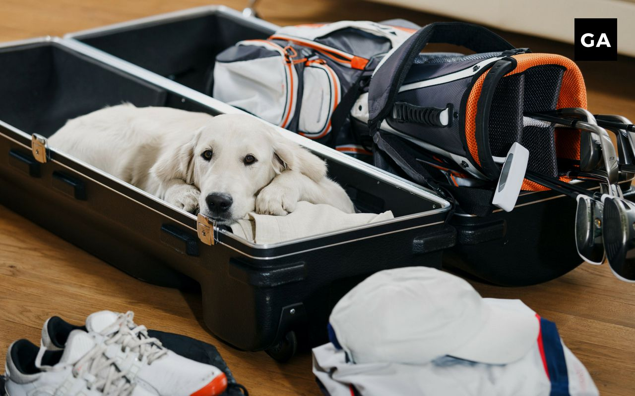 Top 10 Best Travel Golf Bags In 2019 Hard Soft Case Options